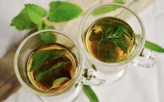 Чай при сахарном диабете